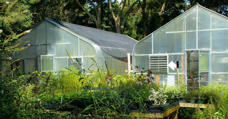 Best Greenhouse Gardening Books For Year Round Veggies Full Home