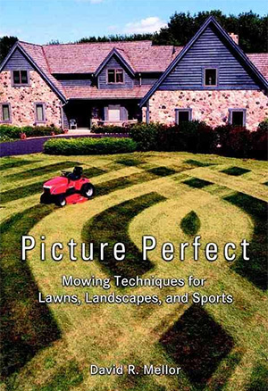 picture perfect book