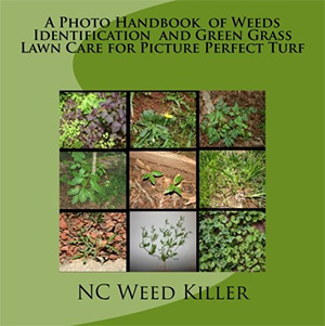 photo handbook of weeds