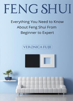everything you need to know feng shui