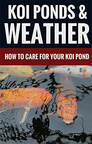 koi ponds and weather