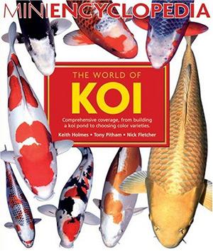 world of koi