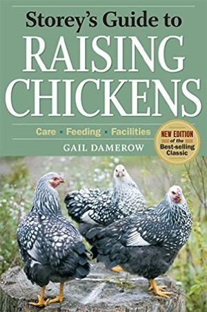 storeys guide raising chickens