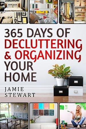 365 days of decluttering