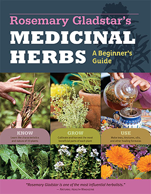 rosemary gladstars medicinal herbs