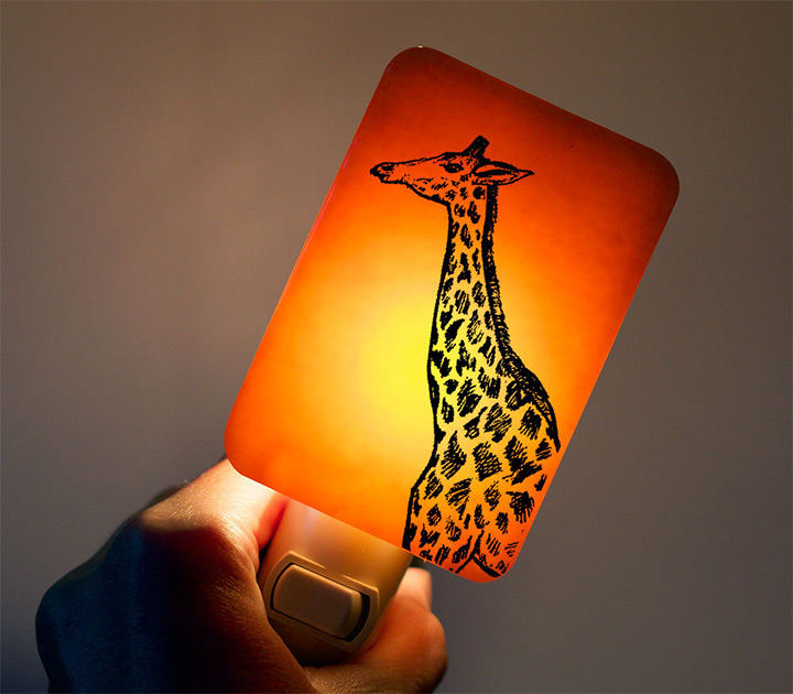 nightlights of giraffes
