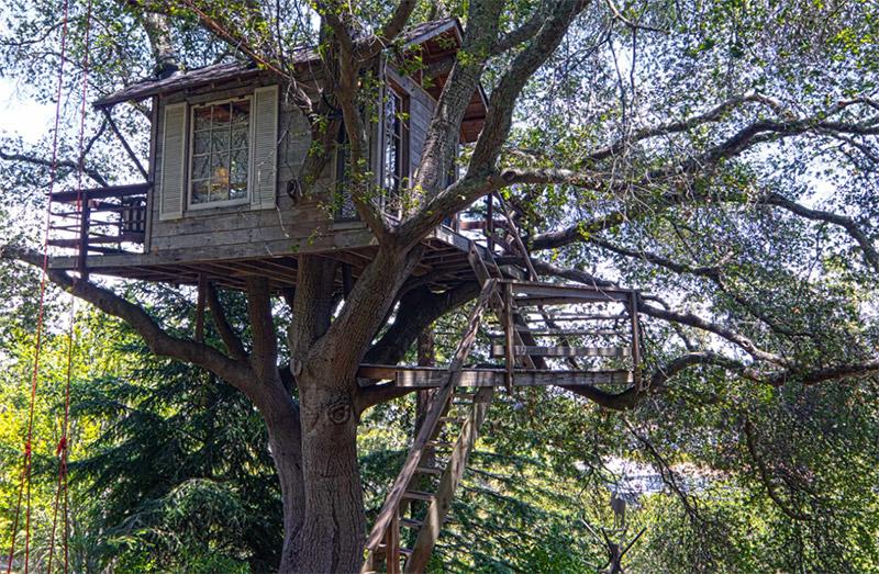 backyard rustic treehouse design