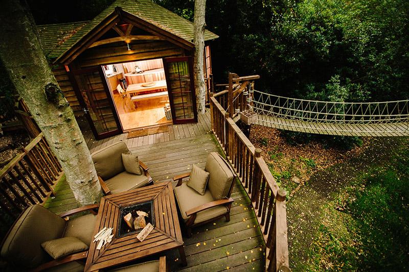 aerial view treehouse backyard