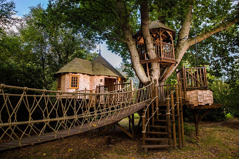 timbertop hangout huge treehouse