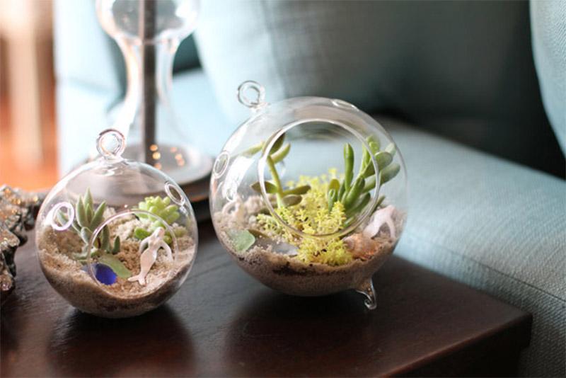 ocean themed terrarium diy