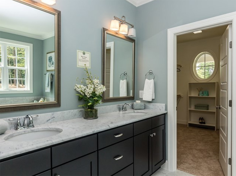 black cabinets with double mirrors